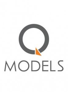 Q-Models