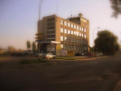 Centrum Szkolenia i Doradztwa Delve